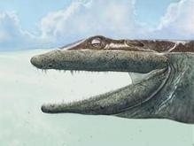 Ученые обнаружили останки самого примитивного четвероногого существа