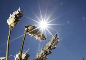 Россия не намерена ограничивать экспорт зерна