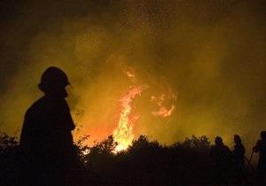 В киевском парке произошел пожар