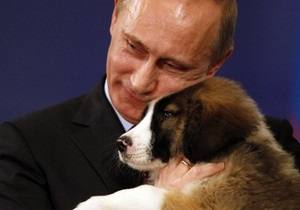 Японский щенок, подаренный Путину, прибыл в Москву