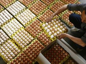 Яйца: за и против