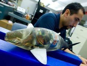Американские ученые усовершенствовали роботов-рыб