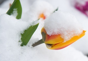 Прогноз погоды на пятницу, 19 марта