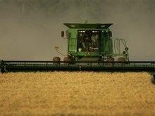 В Украине завершена уборка пшеницы