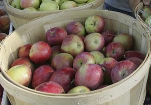 СМИ: Польские производители готовятся к яблочным войнам с Украиной