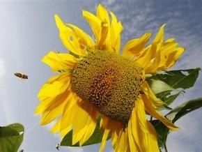 Лето на Земле появилось 13 тысяч лет назад