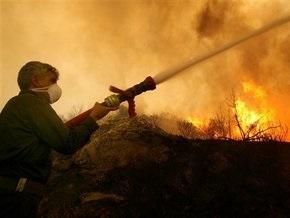 Пожар на иловых полях в Бортничах под Киевом ликвидирован