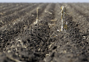 Налог на землю - Аграриев ожидает увеличение фиксированного налога почти в шесть раз - Ъ