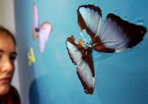 Дэмиен Херст выпустил обои с изображением бабочек