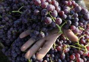 Виноград может понижать кровяное давление