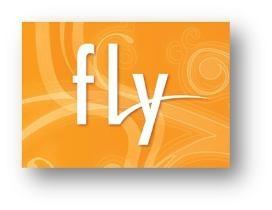Fly представляет в Украине линейку QWERTY-телефонов