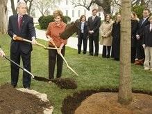 Буш с супругой посадили памятный дуб