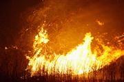 Из-за баловства с огнем в Житомирской области погибли трое детей