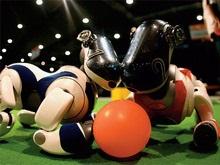 Ученые: В 2025 году роботы смогут обыграть в футбол сильнейшую команду в мире