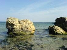 Экологи советуют не купаться в районе Одессы