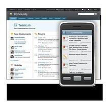 Мобильная версия Teamlab — корпоративный портал на Вашем iPhone и Android устройстве.