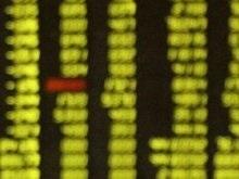 Аналитики Уолл-стрит ухудшают прогнозы