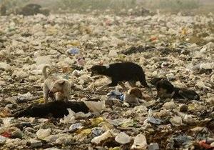 Из Киева намерены вывезти ядовитые отходы