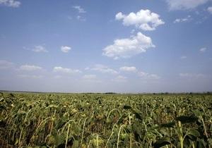 Цены на продовольствие во всем мире возобновили свой рост
