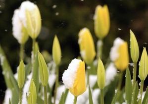 Прогноз погоды на среду, 14 марта