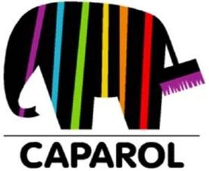 Активности в точках продаж: Caparol знает как