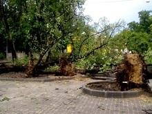Стихия во Львове: Еще одна жертва