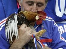 Фотогалерея: Голландия - Франция: Футбольная феерия
