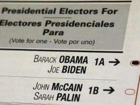 Кого кроме Обамы и Маккейна американцы увидят в бюллетенях 4 ноября: экзотические кандидаты