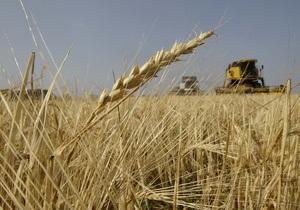 Аграрии рассказали, как довести объем урожая украинского зерна до 100 млн тонн