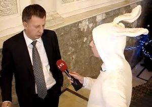Журналист 1+1 пришел в Верховную Раду в костюме кролика