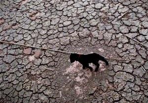 Сильнейшая засуха в Китае: От нехватки питьевой воды страдают свыше 6,6 млн человек