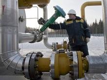 Энергетическое агентство назвало позицию Газпрома слишком жесткой