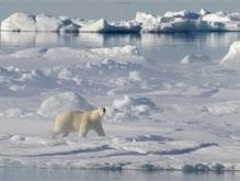 Российский военный флот возобновляет патрулирование Арктики