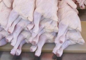 Ученые: Регулярное употребление куриного мяса и яиц улучшает память