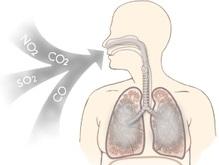 Угарный газ может лечить легочные заболевания