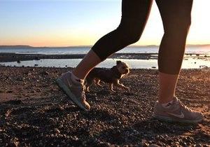 25% британцев ходят пешком не более часа в неделю
