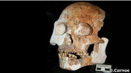 В Китае найдены останки, возможно, нового вида человека