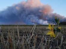 Шандра о взрывах в Лозовой: Они менее безопасны, чем в Новобогдановке