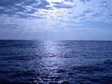 Недалеко от Одессы затонула яхта