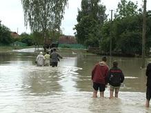 В отличие от Буковины, на Прикарпатье мародеров нет