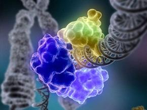 Создана ДНК, способная эволюционировать самостоятельно
