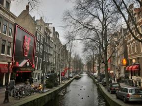 Полицию Нидерландов вооружат мобильными телефонами