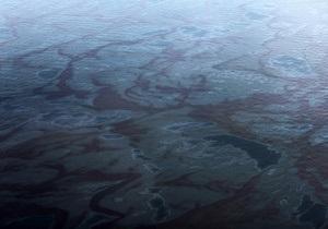 Власти США выяснили, сколько нефти ежедневно поступает в Мексиканский залив