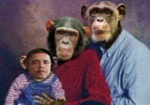 Республиканка из Калифорнии изобразила Барака Обаму в образе шимпанзе