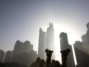 Из-за кризиса в Дубаи пострадали животные