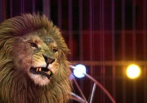 Лев напал на дрессировщика во Львовском цирке