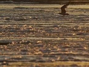 На Дунае в Одесской области обнаружили нефтяное пятно