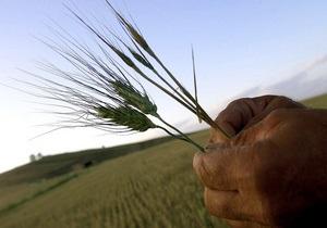 Кабмин снял ограничения на экспорт зерна