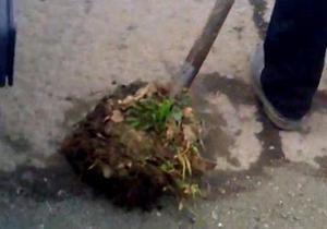 Новости Мукачево - украинские дороги - ремонт дорог - В Мукачево работники автодора засыпают ямы в асфальте землей с обочины