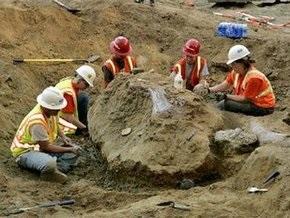 В Калифорнии обнаружены останки мамонта